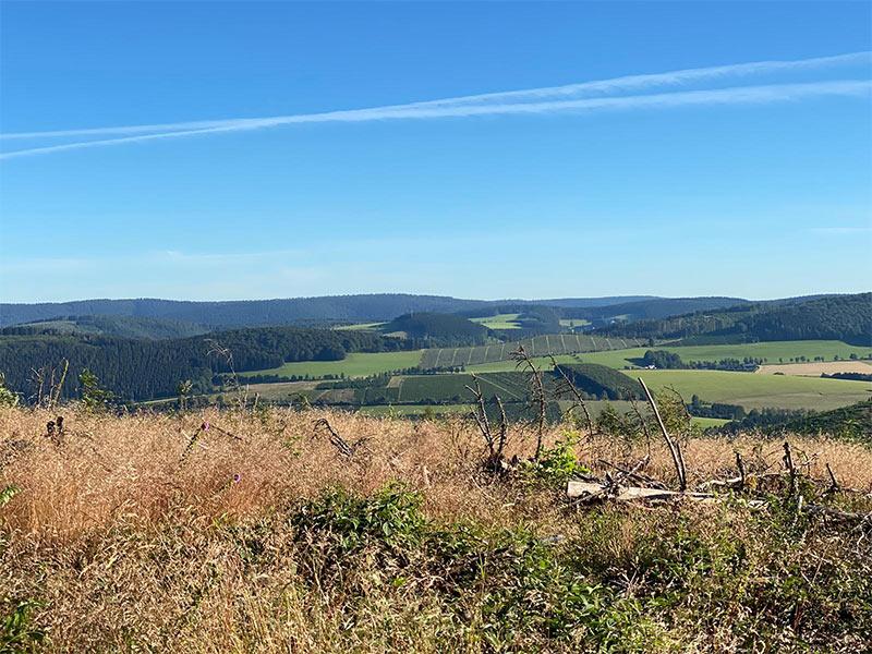Wandelen-Winterberg